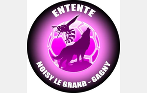 Entente Noisy-Le-Grand - Gagny